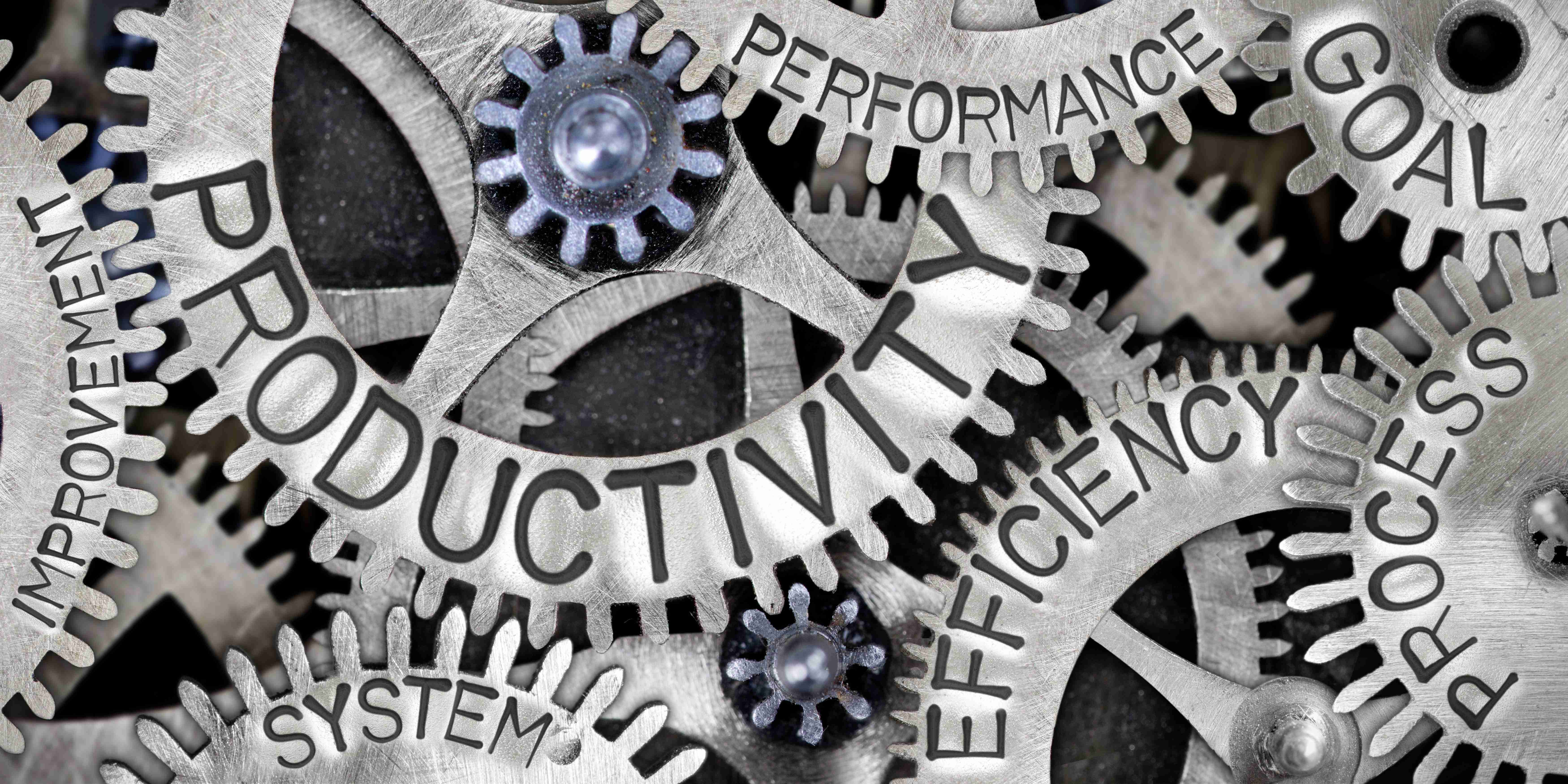 Therapy Productivity: An Approach that Ensures Clinic Profitability